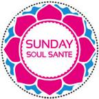 soul sante logo